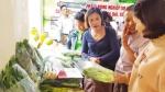 Mở rộng vùng trồng rau an toàn Chúc Sơn