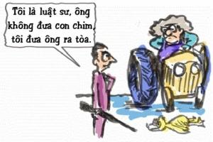 Thư giãn: 'Luật sư trả giá vì mắc bẫy bác nông dân'