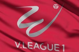 Lịch thi đấu bóng đá V.League 2019