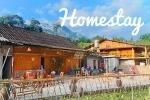 Homestay là gì? Phân biệt homestay với khách sạn, nhà nghỉ, resort, bungalow ở Việt Nam