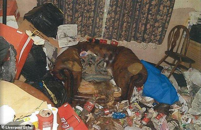 Bà Valerie được phát hiện đang hấp hối trên chiếc ghế sofa.