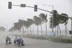 Bão và áp thấp nhiệt đới có gì khác nhau?