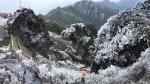 Fansipan (Lào Cai) hóa núi tuyết, cây cỏ đông cứng trong âm 8 độ