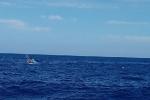 Kịp thời cứu 5 ngư dân Phú Yên gặp nạn trên biển