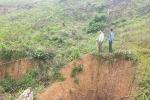 Sớm xử lý việc chiếm đất rừng ở Lâm trường Đồng Hợp