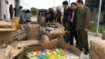 Bình Định: Tiêu hủy tang vật vi phạm hành chính trị giá hơn 830 triệu đồng