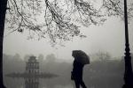 Dự báo thời tiết hôm nay 15/12: Bắc bộ trời giảm rét, sáng sớm có sương mù