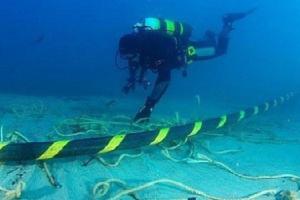 Thường xuyên bị cá mập cắn nhưng vì sao lại rải cáp và cáp quang xuống đáy biển?