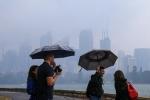 Sydney đón 'cơn mưa vàng' sau nhiều tháng cháy rừng