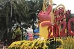 Chiêm ngưỡng con đường hoa đẹp 'hút hồn' người dân xứ Nghệ