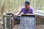 Ông chủ và nhóm công nhân trại ong bị đuổi đánh, dọa giết