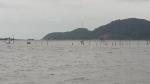 Hà Tĩnh: Nhà hàng, khu du lịch đóng cửa, hàng chục héc-tangao cũng đìu hiu