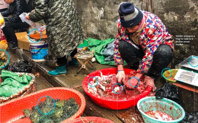 Một khu chợ buôn bán động vật hoang dã tại Trung Quốc. Ảnh: SCMP.