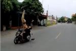 Xe máy tông thẳng cảnh sát giao thông