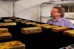 Người nắm giữ bí mật kho báu 20 tấn vàng của tàu Mỹ