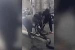 Clip: Lính cứu hỏa tay không bắt quái vật dài 5m hung dữ mò vào nhà ăn thịt mèo
