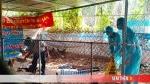 Thành phố Quảng Ngãi: Xuấthiện ổ dịch cúm H5N6
