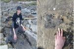 Chạy bộ thể dục, nữ tiến sĩ xinh đẹp 'đụng độ' quái vật 166 triệu tuổi