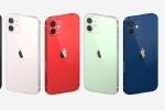 iPhone 12 chính hãng lên kệ đầu tháng 12, giá từ 21 triệu đồng
