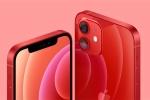 'iPhone 12 là phiên bản đáng mua nhất ở Việt Nam'