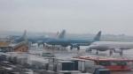 Các hãng hàng không đồng loạt hủy, đẩy giờ bay đến Quảng Nam và các tỉnh miền Trung vì bão số 9