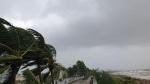 Bão giật cấp 16, Đà Nẵng, Quảng Ngãi, Bình Định mưa to, gió lớn, cây xanh ngã đổ