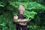 Độc đáo bài văn miêu tả 'Vườn nhà bà' toàn dấu huyền, vừa bình dị lại cực gần gũi thân thương