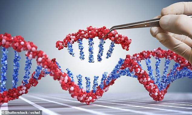 """Chính xác thì CRISPR/Cas9 là một """"chiếc kéo siêu nhỏ"""", nó sẽ tiêu diệt tế bào ung thư trong cơ thể bằng cách xác định chính xác và loại bỏ các tế bào ung thư."""