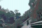 Xe máy vào cua, đâm thằng vào ta-luy: Tiếng hét cuối clip của thanh niên khiến nhiều người 'lạnh gáy'