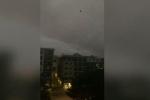 Clip: Hoảng hồn cảnh hàng trăm con quạ vây hãm bầu trời suốt 14 tiếng
