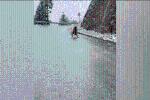 Clip: Vì quá lạnh, chó cưng trượt chân lia lịa trên đường đóng băng