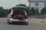 Chiếc ôtô bật mở cốp, những cánh tay vẫy chào khiến cả phố thất kinh tự hỏi: Tài xế là ai?