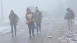 Lai Châu: Không khí lạnh tăng cường và cảnh báo rét đậm, rét hại