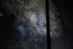 Sốc: Sinh vật lạ dưới 'mộ băng' 900 mét, sống không cần thức ăn, ánh sáng