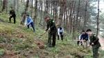 Yên Bái: Cấp bách phòng cháy, chữa cháy để bảo vệ hàng trăm hecta rừng trước