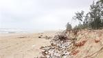 Cần sớm xử lý rác thải tồn đọng dọc bờ biển Gio Linh