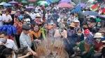 Hơn 60.000 lượt khách thập phương về tri ân công đức Vua Hùng