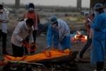 Clip sốc: Thi thể nạn nhân Covid-19 Ấn Độ bị nhân viên xe cứu thương đẩy xuống sông