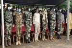 Phó Tổng thống đảo chính, Tổng thống, Thủ tướng và Bộ trưởng Quốc phòng Mali cùng bị bắt