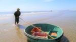 Hà Tĩnh: Niềm vui sau khi dỡ bỏ phong tỏa, ngư dân ra khơi 'trúng đậm' ruốc biển