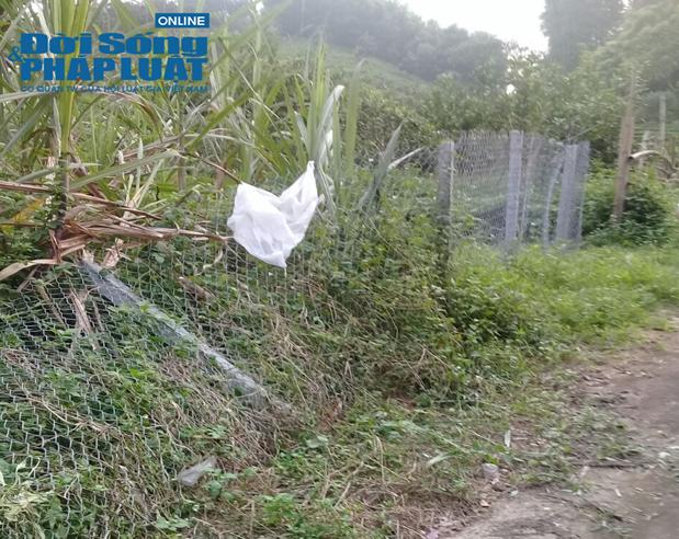 Hiện trường xảy ra vụ việc tại thôn 1 Minh Phú, xã Yên Phú