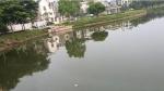 Hồ trong khu đô thị 'đẳng cấp nhất Bắc Giang' bốc mùi xú uế