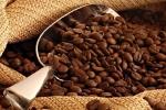 Giá cà phê hôm nay 17/9: Robusta vượt mốc 2.100 USD/tấn trong tâm lý thận trọng của giới đầu cơ