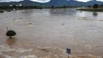 Khả năng xuất hiện lũ lớn trên các sông từ Thanh Hóa đến Hà Tĩnh