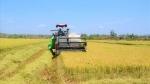 Đắk Nông: Nông dân Buôn Choáh không còn