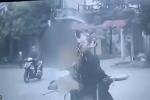 Cô gái vừa đi xe đạp điện vừa uống trà sữa, cái kết đâm thẳng vào ôtô khiến nhiều người lắc đầu ngán ngẩm
